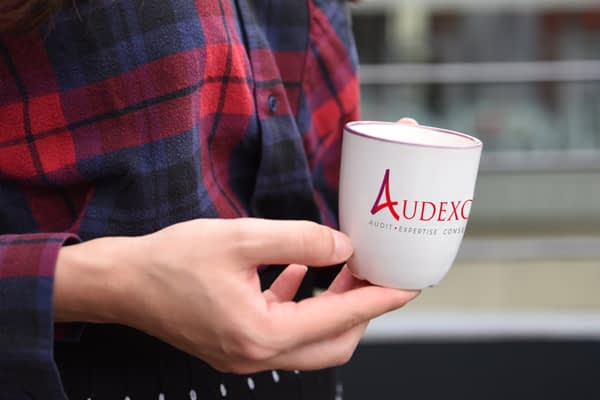 AUDEXO Pole Expertise Comptable